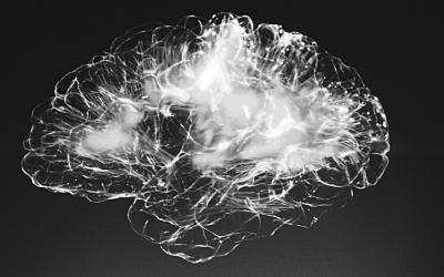 Waarom lukt het ons niet om te veranderen? Belangrijke feiten over onze hersenen.